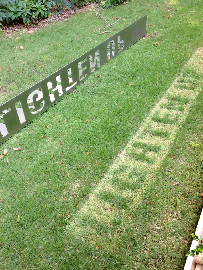 Hester/Experimental Typography/Dead Grass