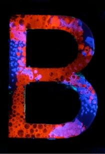 Hester/Experimental Typography/Gelatin/B